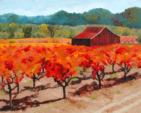 Redwood Barn in the Fall Vineyards